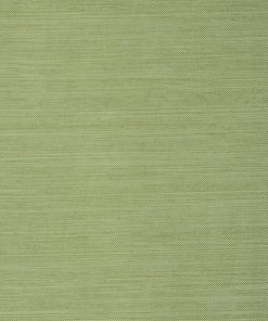 L3-Mpol-1201 - Citron